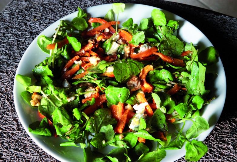 7-Recette-Salade-cresson-chevre-carottes-noix-e1443013715856