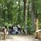 Sentier de découverte sur la forêt