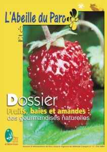 abeille-du-parc-11_ete-2003