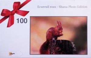puzzle-ecureuil-roux-web