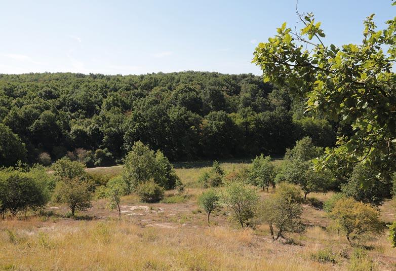 Vallée sèche