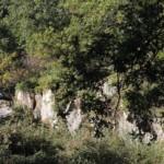 Les buttes gréseuses de l'Essonne