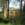 Une cabane pastorale